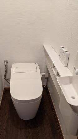 アラウーノS141+カウンター手洗い器